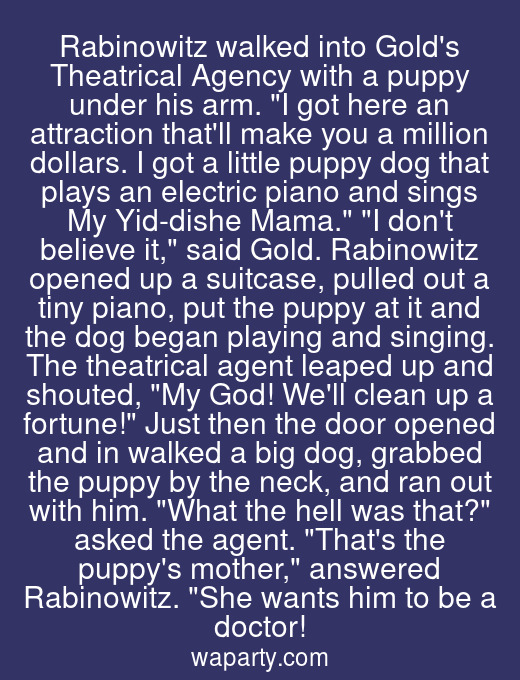 Rabinowitz walked into Golds Theatrical Agency with a puppy under his arm. I got here an attraction thatll make you a million dollars. I got a little puppy dog that plays an electric piano and sings My Yid-dishe Mama. I dont believe it, said Gold. Rabinowitz opened up a suitcase, pulled out a tiny piano, put the puppy at it and the dog began playing and singing. The theatrical agent leaped up and shouted, My God! Well clean up a fortune! Just then the door opened and in walked a big dog, grabbed the puppy by the neck, and ran out with him. What the hell was that? asked the agent. Thats the puppys mother, answered Rabinowitz. She wants him to be a doctor!