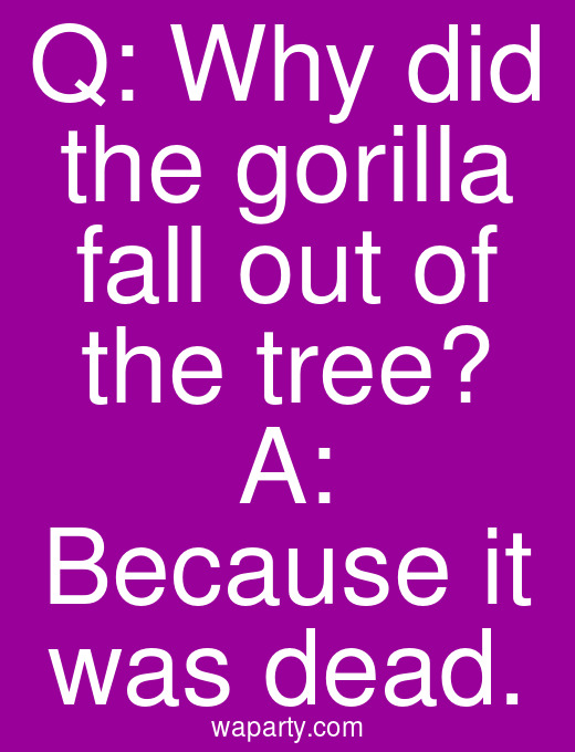 Q: Why did the gorilla fall out of the tree? A: Because it was dead.