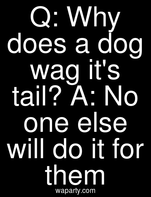 Q: Why does a dog wag its tail? A: No one else will do it for them