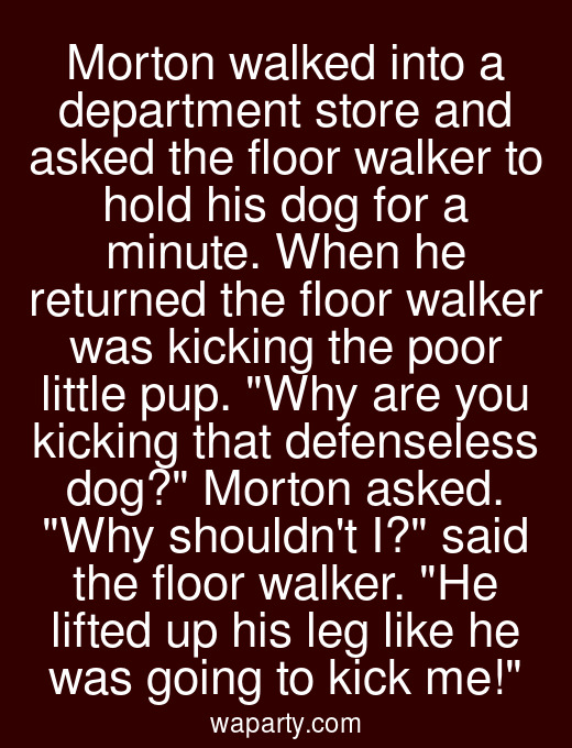 Morton walked into a department store and asked the floor walker to hold his dog for a minute. When he returned the floor walker was kicking the poor little pup. Why are you kicking that defenseless dog? Morton asked. Why shouldnt I? said the floor walker. He lifted up his leg like he was going to kick me!