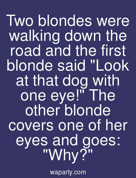 Two blondes were walking down the road and the first blonde said Look at that dog with one eye! The other blonde covers one of her eyes and goes: Why?