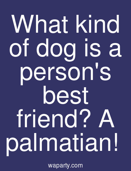 What kind of dog is a persons best friend? A palmatian!