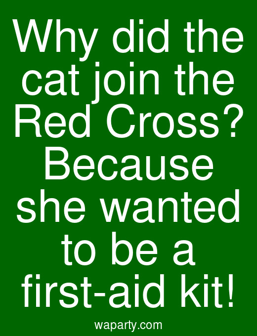 Why did the cat join the Red Cross? Because she wanted to be a first-aid kit!