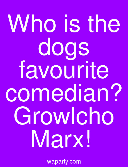 Who is the dogs favourite comedian? Growlcho Marx!