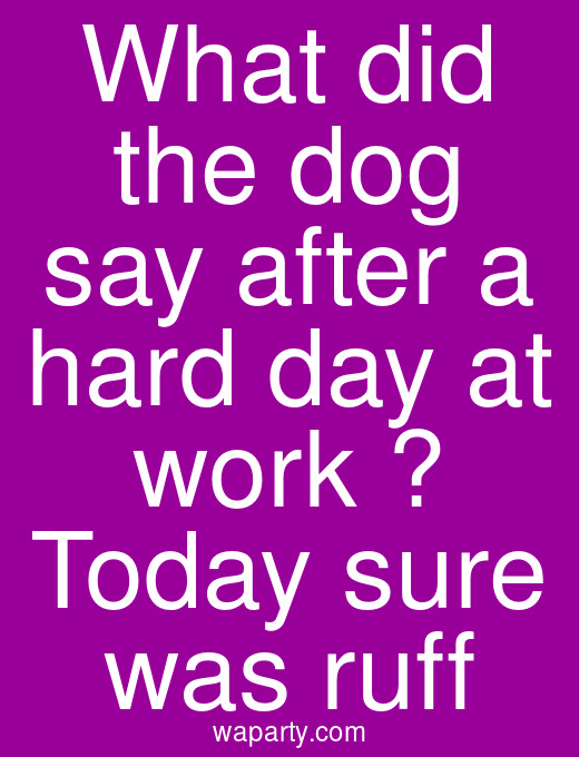 What did the dog say after a hard day at work ? Today sure was ruff