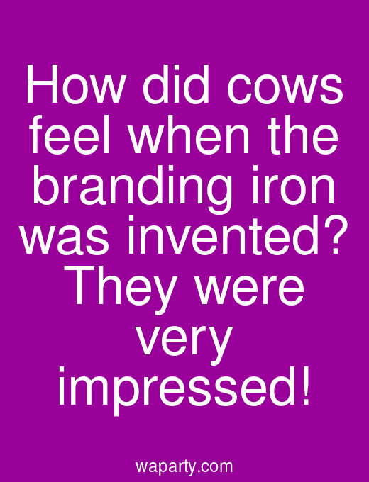 How did cows feel when the branding iron was invented? They were very impressed!