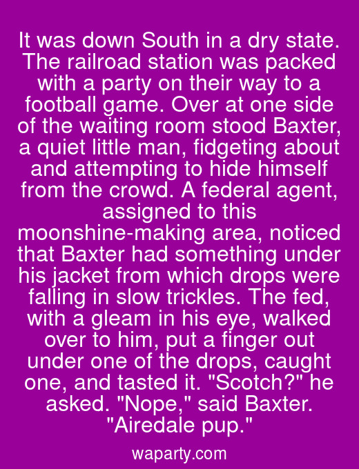 It was down South in a dry state. The railroad station was packed with a party on their way to a football game. Over at one side of the waiting room stood Baxter, a quiet little man, fidgeting about and attempting to hide himself from the crowd. A federal agent, assigned to this moonshine-making area, noticed that Baxter had something under his jacket from which drops were falling in slow trickles. The fed, with a gleam in his eye, walked over to him, put a finger out under one of the drops, caught one, and tasted it. Scotch? he asked. Nope, said Baxter. Airedale pup.