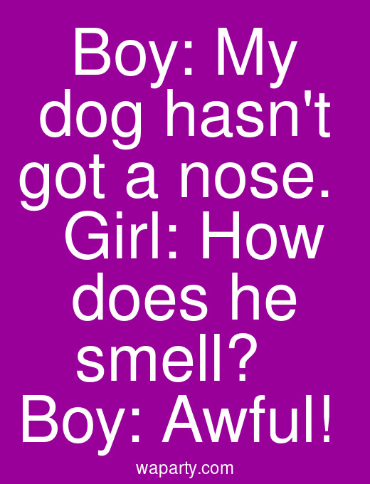 Boy: My dog hasnt got a nose.   Girl: How does he smell?   Boy: Awful!