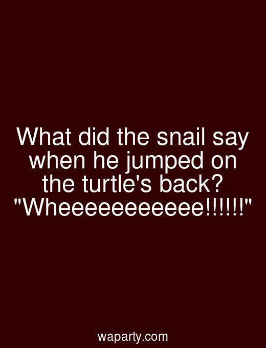 What did the snail say when he jumped on the turtles back? Wheeeeeeeeeee!!!!!!