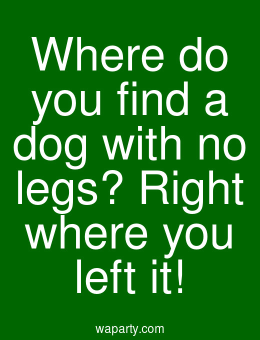 Where do you find a dog with no legs? Right where you left it!