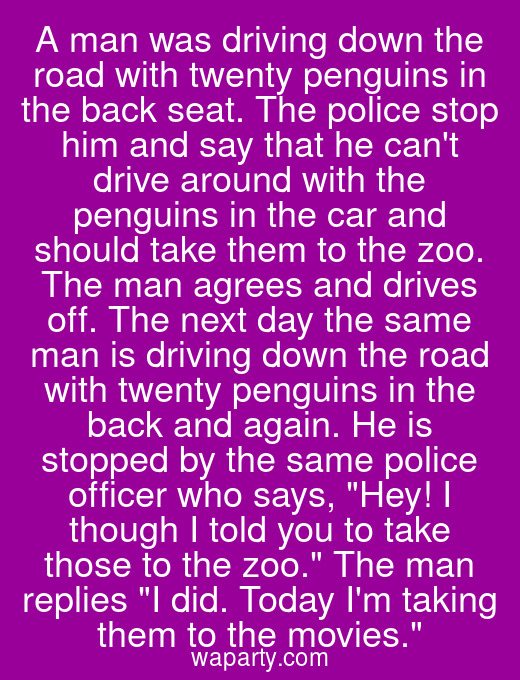 A man was driving down the road with twenty penguins in the back seat. The police stop him and say that he cant drive around with the penguins in the car and should take them to the zoo. The man agrees and drives off. The next day the same man is driving down the road with twenty penguins in the back and again. He is stopped by the same police officer who says, Hey! I though I told you to take those to the zoo. The man replies I did. Today Im taking them to the movies.