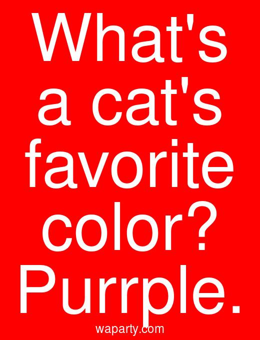 Whats a cats favorite color? Purrple.
