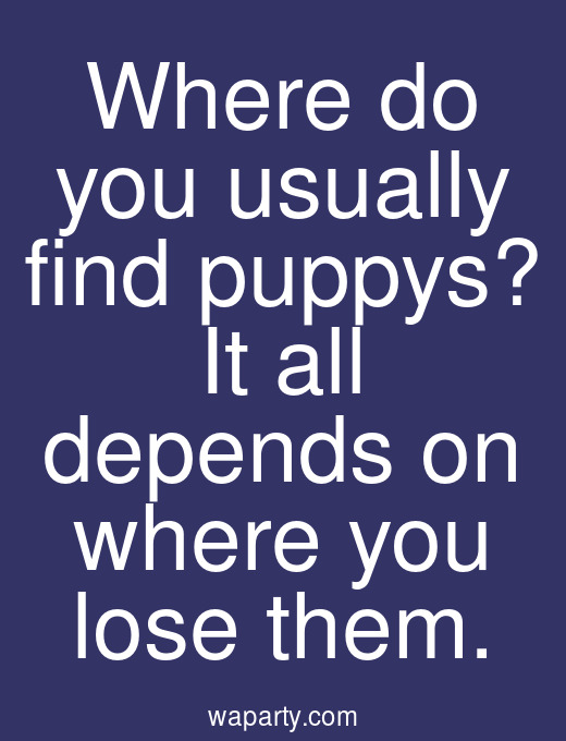 Where do you usually find puppys? It all depends on where you lose them.
