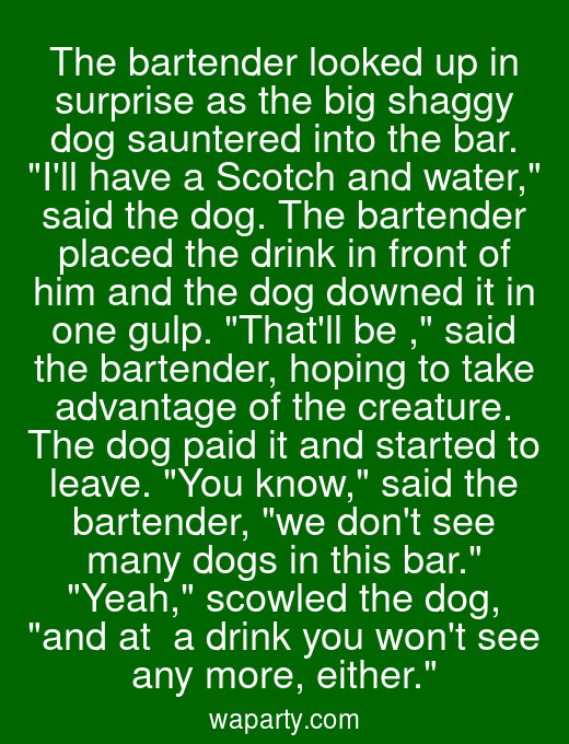 The bartender looked up in surprise as the big shaggy dog sauntered into the bar. Ill have a Scotch and water, said the dog. The bartender placed the drink in front of him and the dog downed it in one gulp. Thatll be $10, said the bartender, hoping to take advantage of the creature. The dog paid it and started to leave. You know, said the bartender, we dont see many dogs in this bar. Yeah, scowled the dog, and at $10 a drink you wont see any more, either.