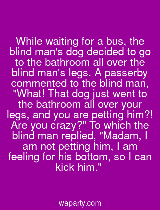 While waiting for a bus, the blind mans dog decided to go to the bathroom all over the blind mans legs. A passerby commented to the blind man, What! That dog just went to the bathroom all over your legs, and you are petting him?! Are you crazy? To which the blind man replied, Madam, I am not petting him, I am feeling for his bottom, so I can kick him.