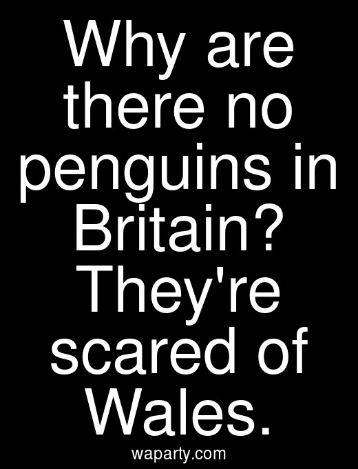 Why are there no penguins in Britain? Theyre scared of Wales.