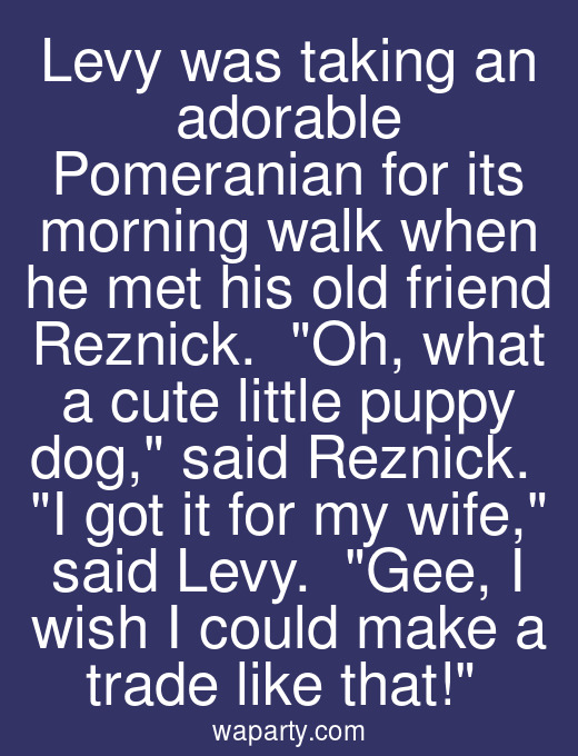 Levy was taking an adorable Pomeranian for its morning walk when he met his old friend Reznick.  Oh, what a cute little puppy dog, said Reznick.  I got it for my wife, said Levy.  Gee, I wish I could make a trade like that!