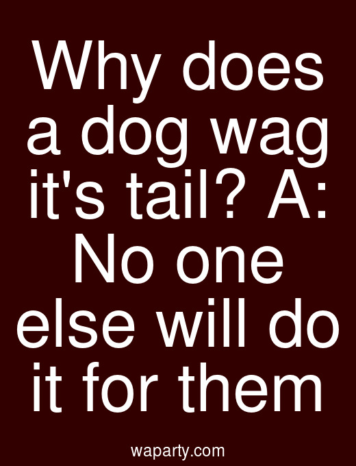 Why does a dog wag its tail? A: No one else will do it for them