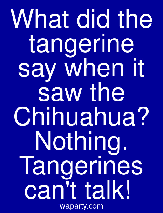 What did the tangerine say when it saw the Chihuahua? Nothing. Tangerines cant talk!