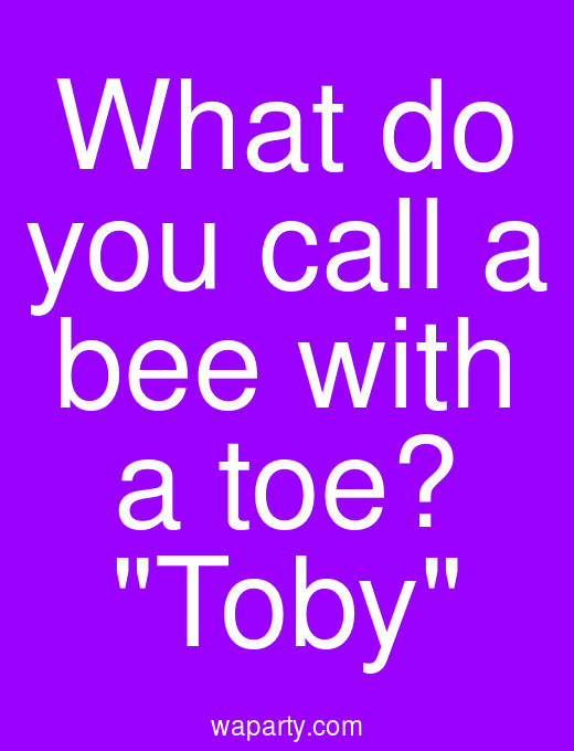 What do you call a bee with a toe? Toby