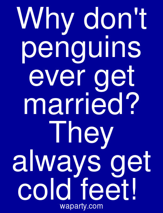 Why dont penguins ever get married? They always get cold feet!