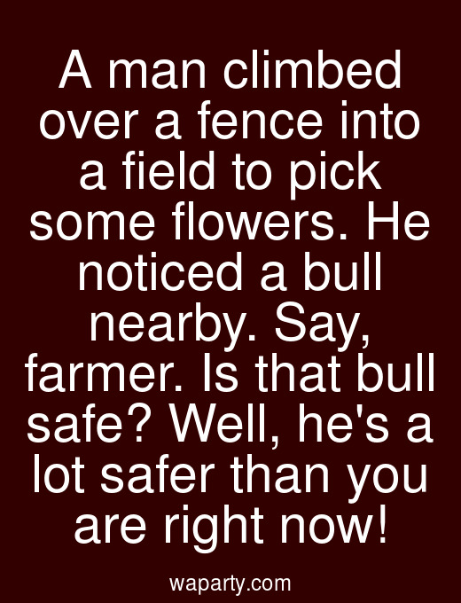 A man climbed over a fence into a field to pick some flowers. He noticed a bull nearby. Say, farmer. Is that bull safe? Well, hes a lot safer than you are right now!