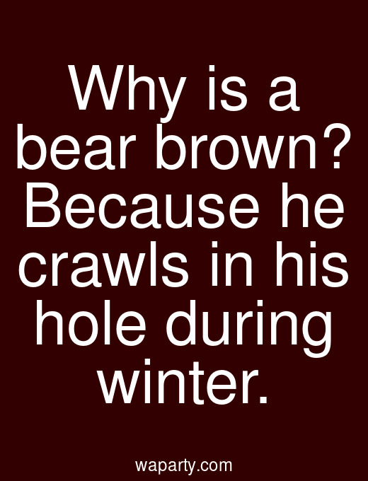 Why is a bear brown? Because he crawls in his hole during winter.