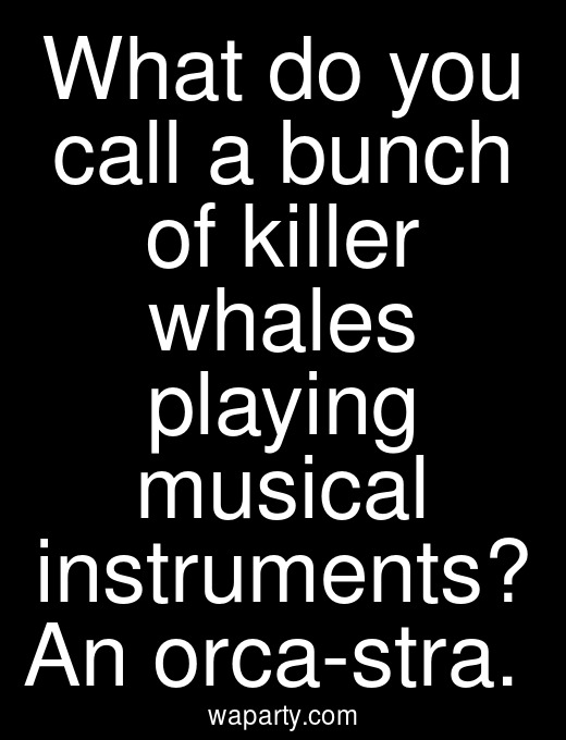What do you call a bunch of killer whales playing musical instruments? An orca-stra.