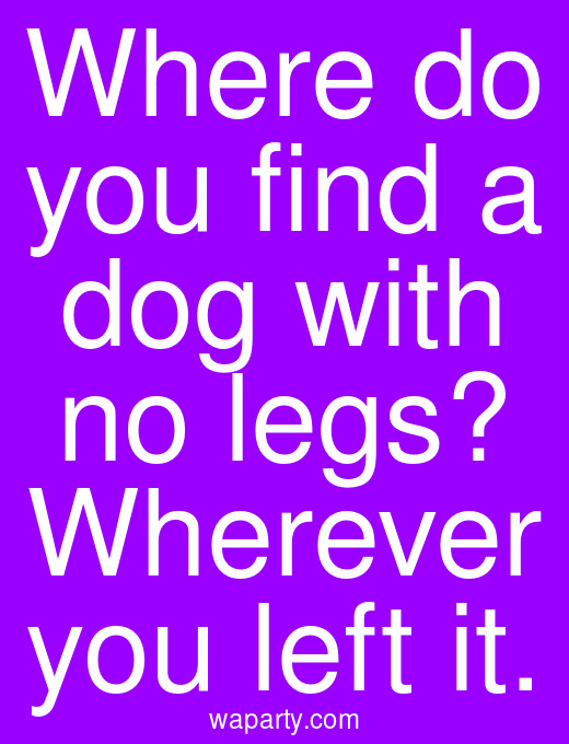 Where do you find a dog with no legs? Wherever you left it.