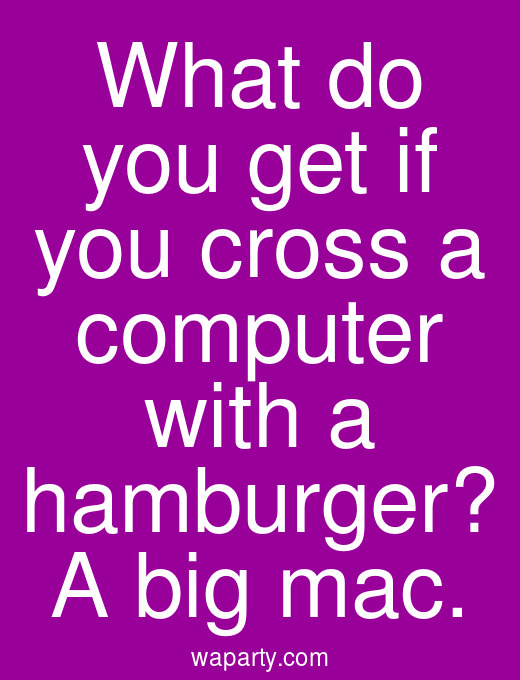 What do you get if you cross a computer with a hamburger? A big mac.