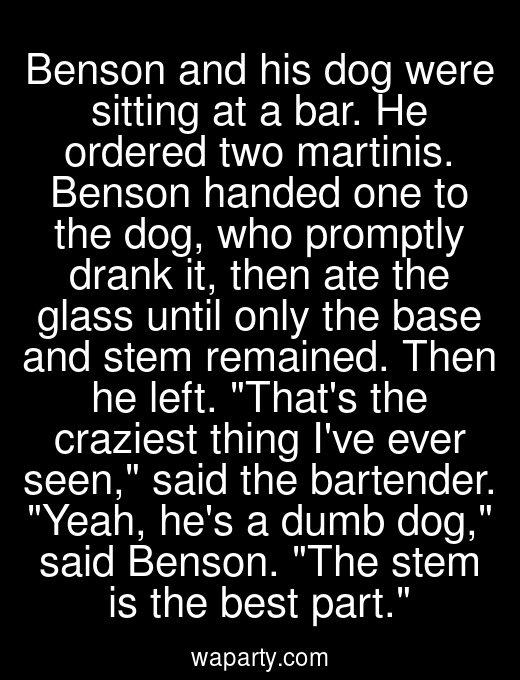 Benson and his dog were sitting at a bar. He ordered two martinis. Benson handed one to the dog, who promptly drank it, then ate the glass until only the base and stem remained. Then he left. Thats the craziest thing Ive ever seen, said the bartender. Yeah, hes a dumb dog, said Benson. The stem is the best part.