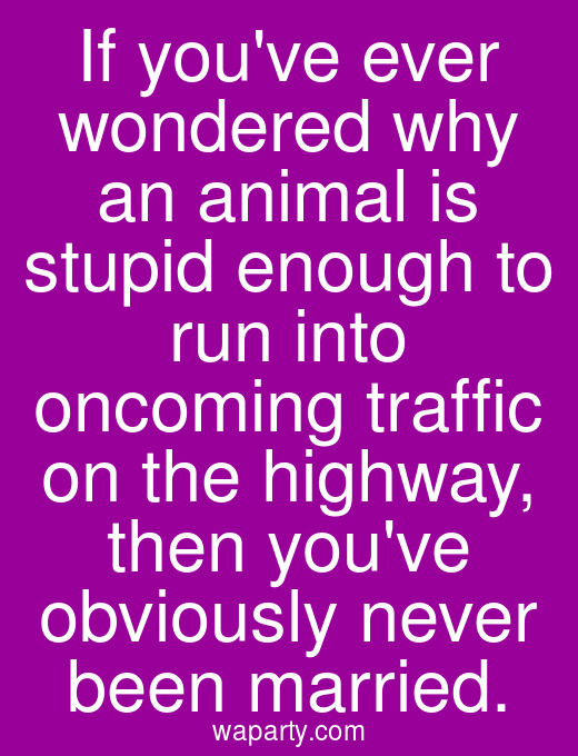 If youve ever wondered why an animal is stupid enough to run into oncoming traffic on the highway, then youve obviously never been married.