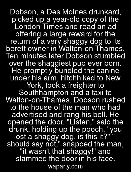 Dobson, a Des Moines drunkard, picked up a year-old copy of the London Times and read an ad offering a large reward for the return of a very shaggy dog to its bereft owner in Walton-on-Thames. Ten minutes later Dobson stumbled over the shaggiest pup ever born. He promptly bundled the canine under his arm, hitchhiked to New York, took a freighter to Southhampton and a taxi to Walton-on-Thames. Dobson rushed to the house of the man who had advertised and rang his bell. He opened the door. Listen, said the drunk, holding up the pooch, you lost a shaggy dog, is this it? I should say not, snapped the man, it wasnt that shaggy! and slammed the door in his face.