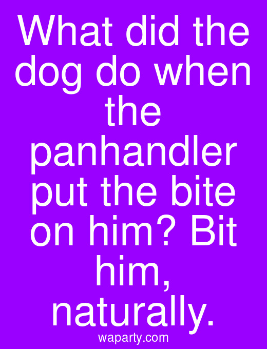 What did the dog do when the panhandler put the bite on him? Bit him, naturally.
