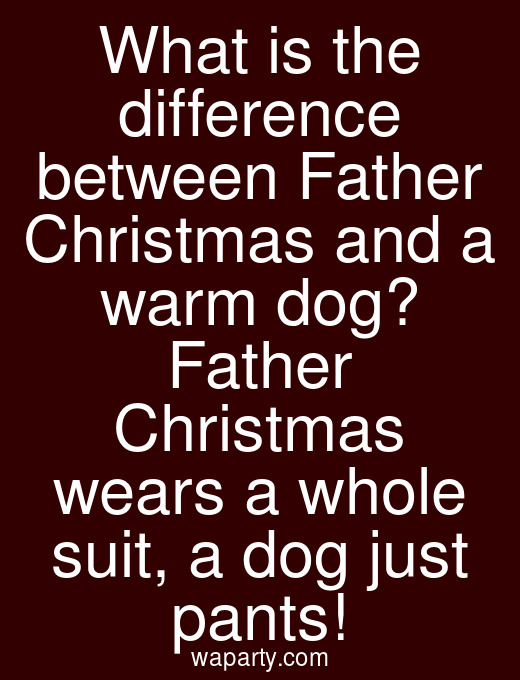 What is the difference between Father Christmas and a warm dog? Father Christmas wears a whole suit, a dog just pants!
