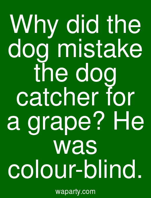 Why did the dog mistake the dog catcher for a grape? He was colour-blind.