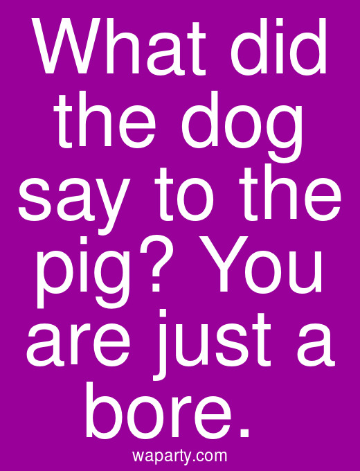 What did the dog say to the pig? You are just a bore.