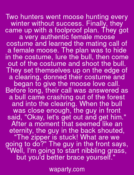 Two hunters went moose hunting every winter without success. Finally, they came up with a foolproof plan. They got a very authentic female moose costume and learned the mating call of a female moose. The plan was to hide in the costume, lure the bull, then come out of the costume and shoot the bull. They set themselves up on the edge of a clearing, donned their costume and began to give the moose love call. Before long, their call was answered as a bull came crashing out of the forest and into the clearing. When the bull was close enough, the guy in front said, Okay, lets get out and get him. After a moment that seemed like an eternity, the guy in the back shouted, The zipper is stuck! What are we going to do? The guy in the front says, Well, Im going to start nibbling grass, but youd better brace yourself.