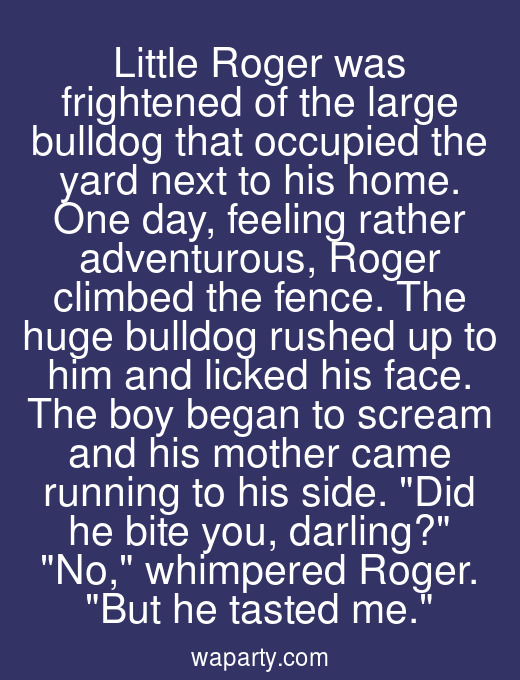 Little Roger was frightened of the large bulldog that occupied the yard next to his home. One day, feeling rather adventurous, Roger climbed the fence. The huge bulldog rushed up to him and licked his face. The boy began to scream and his mother came running to his side. Did he bite you, darling? No, whimpered Roger. But he tasted me.
