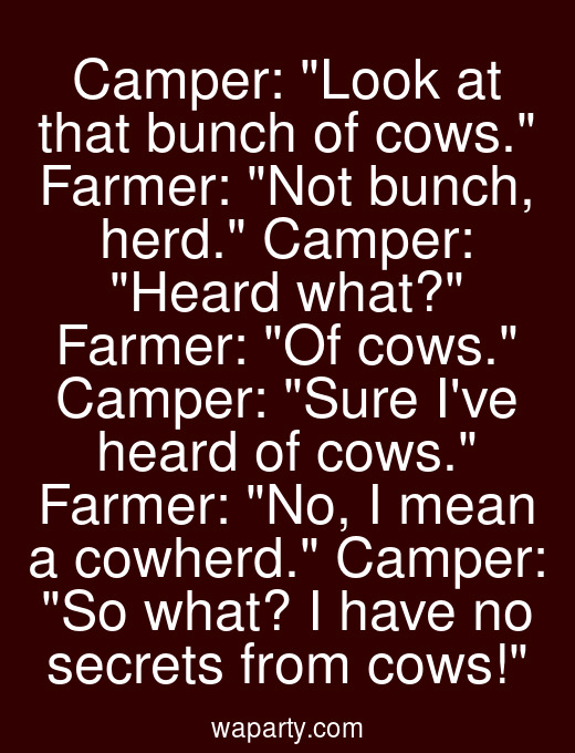 Camper: Look at that bunch of cows. Farmer: Not bunch, herd. Camper: Heard what? Farmer: Of cows. Camper: Sure Ive heard of cows. Farmer: No, I mean a cowherd. Camper: So what? I have no secrets from cows!