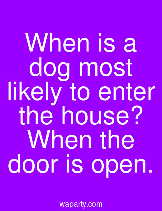 When is a dog most likely to enter the house? When the door is open.