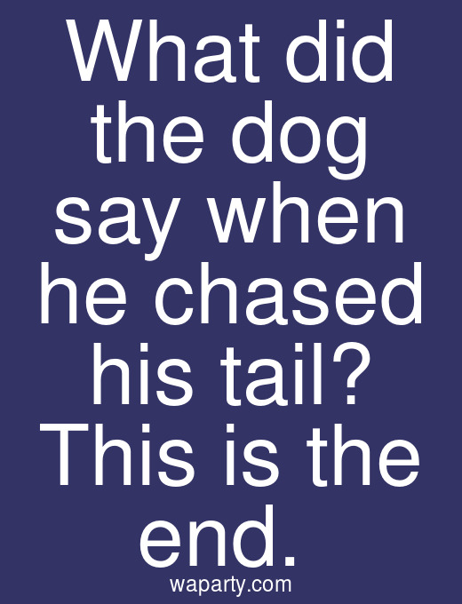 What did the dog say when he chased his tail? This is the end.