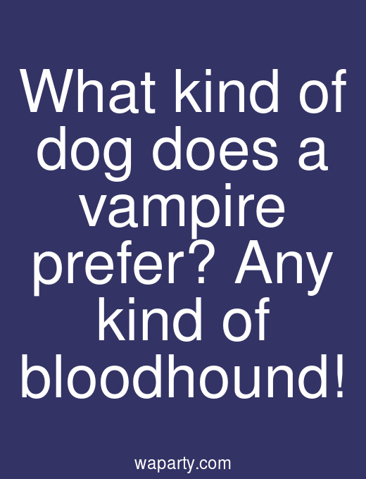 What kind of dog does a vampire prefer? Any kind of bloodhound!