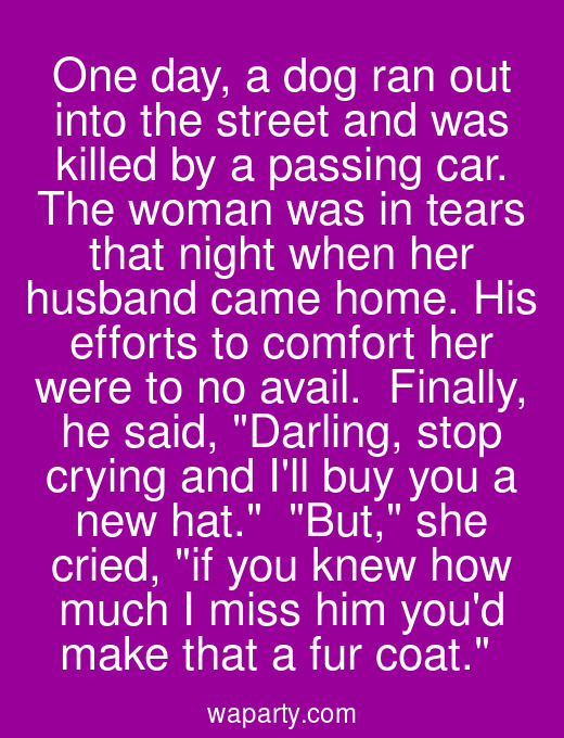 One day, a dog ran out into the street and was killed by a passing car. The woman was in tears that night when her husband came home. His efforts to comfort her were to no avail.  Finally, he said, Darling, stop crying and Ill buy you a new hat.  But, she cried, if you knew how much I miss him youd make that a fur coat.