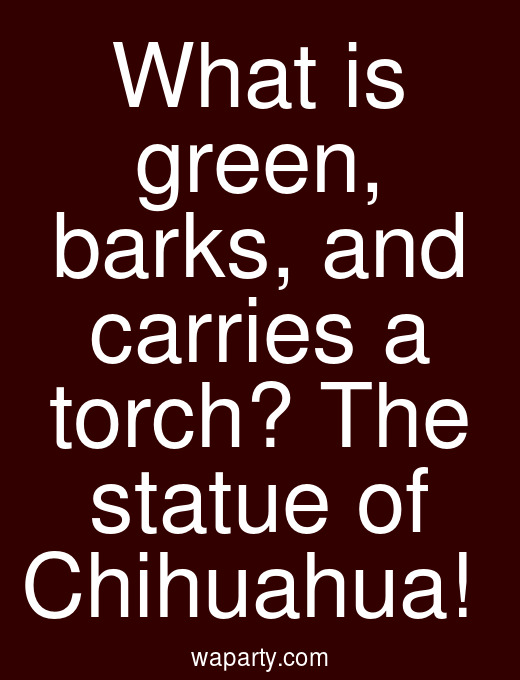 What is green, barks, and carries a torch? The statue of Chihuahua!