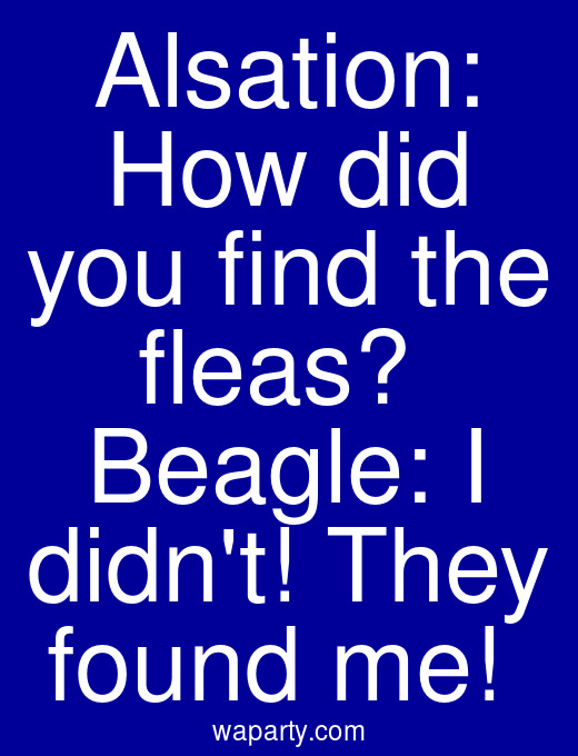 Alsation: How did you find the fleas?  Beagle: I didnt! They found me!