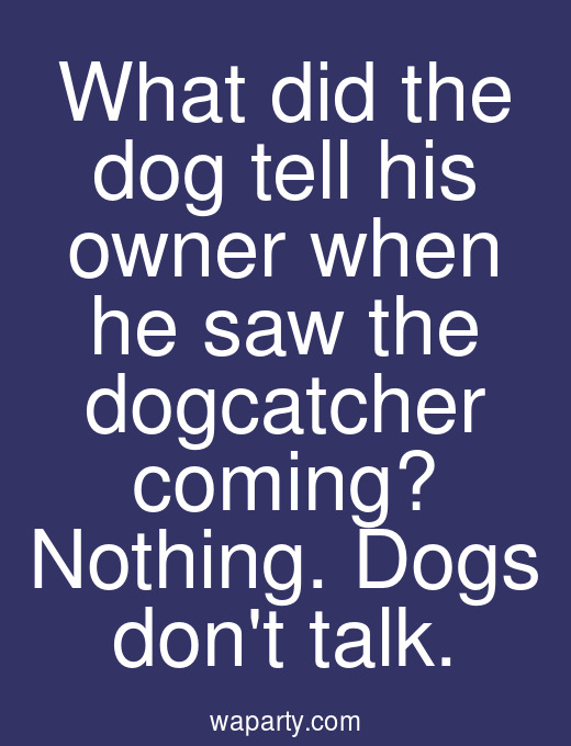 What did the dog tell his owner when he saw the dogcatcher coming? Nothing. Dogs dont talk.