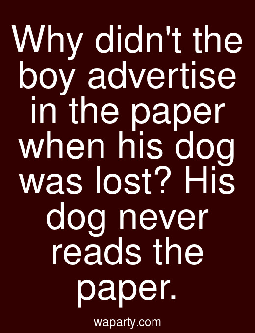 Why didnt the boy advertise in the paper when his dog was lost? His dog never reads the paper.
