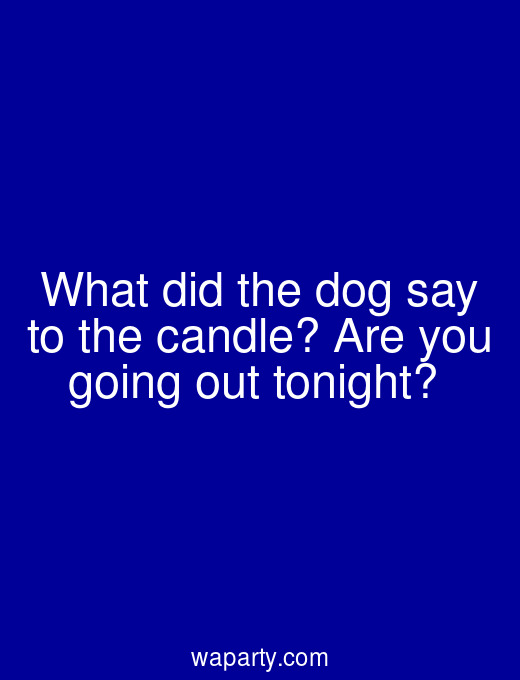 What did the dog say to the candle? Are you going out tonight?