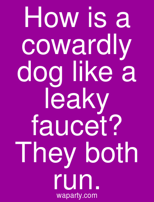 How is a cowardly dog like a leaky faucet? They both run.